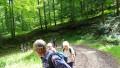Wanderung bei Gönningen