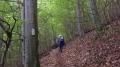Wanderung bei Bad Ditzenbach