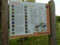 Bienenweg Illertissen