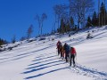 Senioren Alpe Hohenschwand